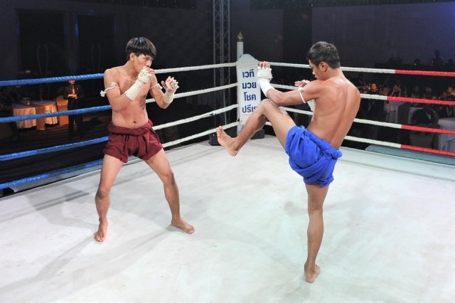 Muay Thai is Perfect Martial Art